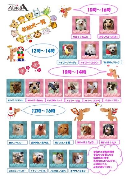 1118三か犬