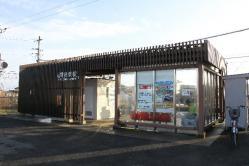 椎柴(2013.2.2)