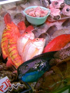061110オキナワの魚 _1106~01