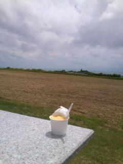沖縄のミルミル②SN3R0815_convert_20120618183014