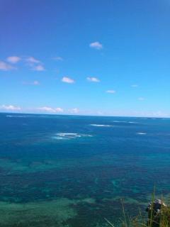 沖縄ぬちマース6 €SN3R0916_convert_20120923165126