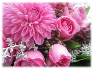flower_20101208211119.jpg