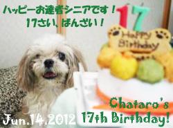 chataro-061412.jpg