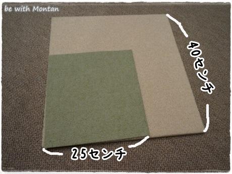 DSC08653-20131201.jpg
