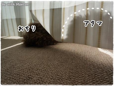 DSC08682-20131201.jpg
