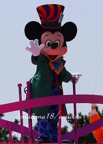 P4247160.jpg