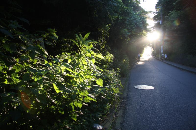 光の方へ3