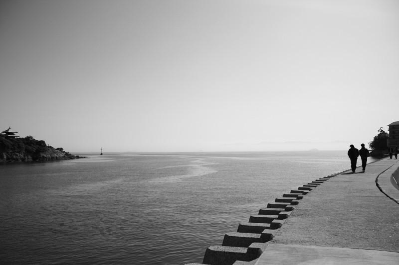 海沿いをさんぽ