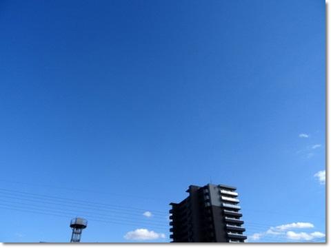 1-DSC09251.jpg