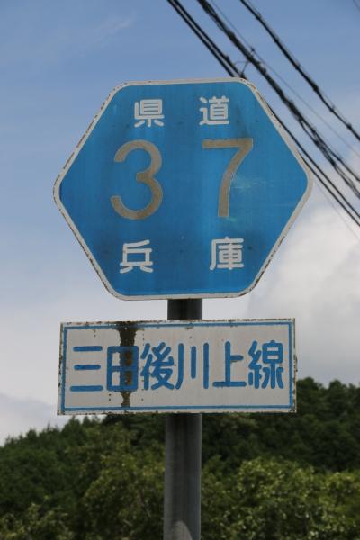 IMG_0531改