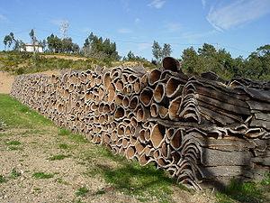 コルクの樹皮画像