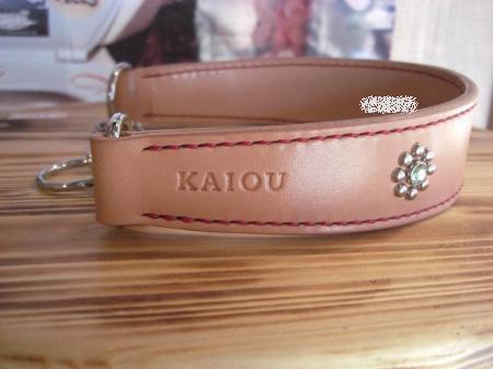 KAIOUモデル