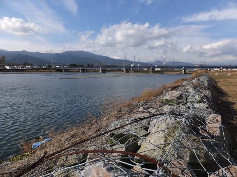 酒匂川左岸飯泉取水堰付近より飯泉橋を望む