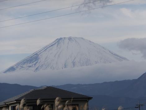 鬼柳堰付近より富士山を望む