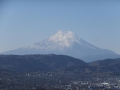 権現山から富士山を望む