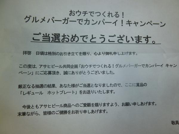 P1010513_20121130210704.jpg