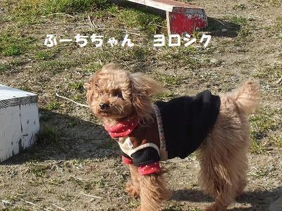 yorosiku14.jpg