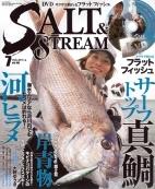 SALT&STREAM