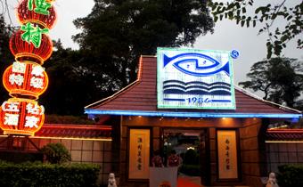 20110923 南海漁村 店 12cmD SC02464