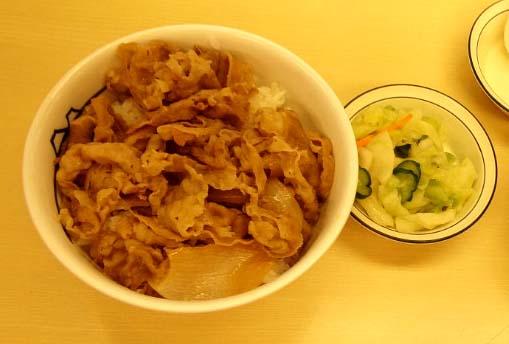 20120630 牛丼 18cm 001