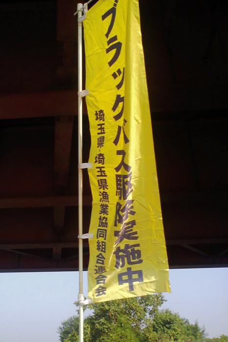 2010083150.jpg