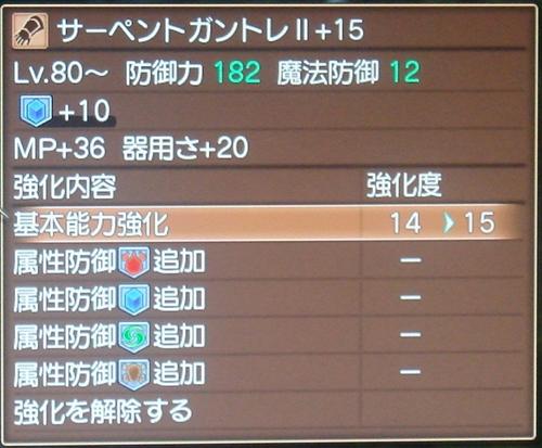 DSC00862_R_20110523211459.jpg