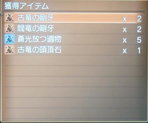 DSC00900_R_20110415180007.jpg