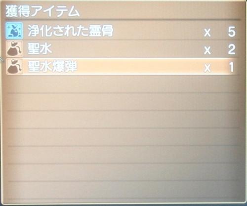 DSC00903_R.jpg