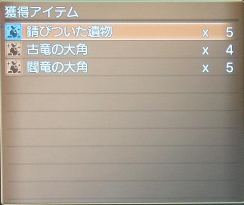 DSC00930_R.jpg