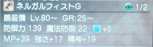DSC00937_R.jpg