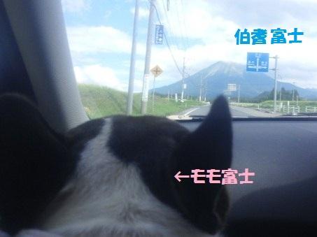 夏休み富士
