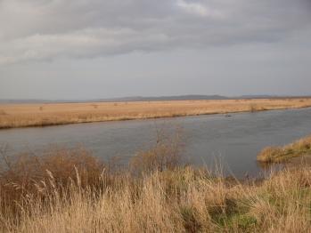 釧路川上流