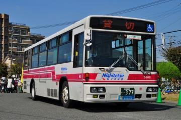 CSC_8688.jpg