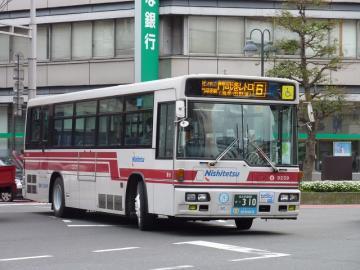 P1010706.jpg