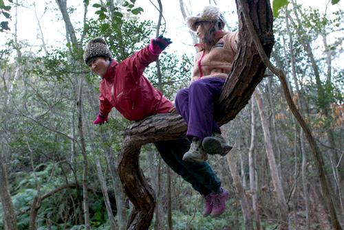 01中山木登り1