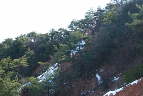 06中山最高峰雪