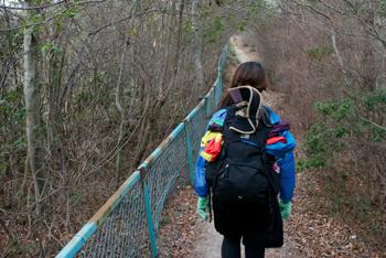 中山フェンスの道