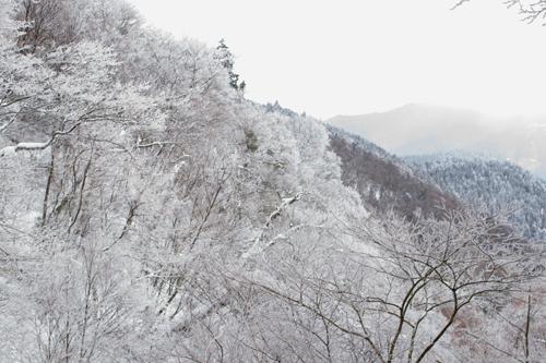16金剛山真っ白の景色