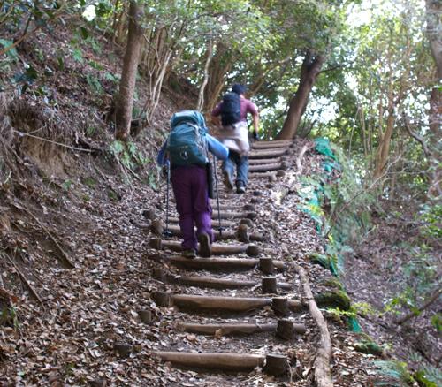 03六甲山東真耶までの登り