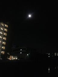 今日は満月♪