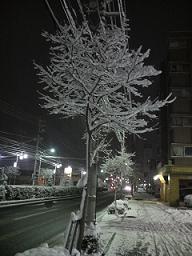 寒空に・・・