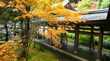 方丈の西側のお庭と仏殿に繋がる渡り廊下。