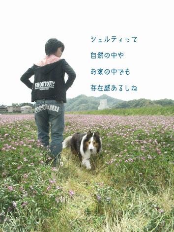 000123_20121103084626.jpg