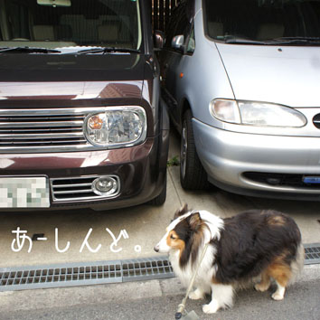 001_20120424130059.jpg