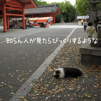 003_20120501205735.jpg