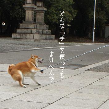 017_20120318001736.jpg