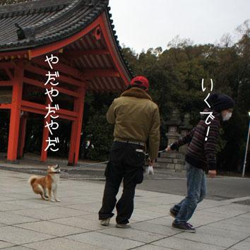 03_20120318002421.jpg