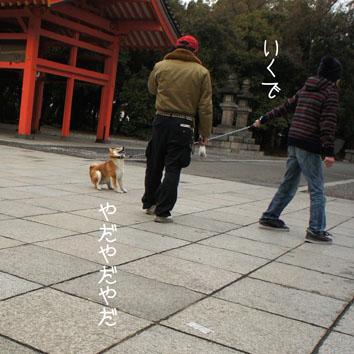 04_20120318002420.jpg