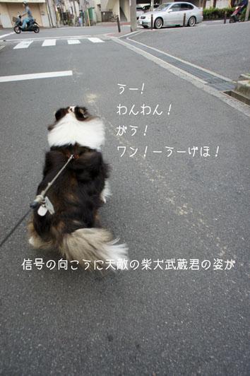 060702_20120608071020.jpg