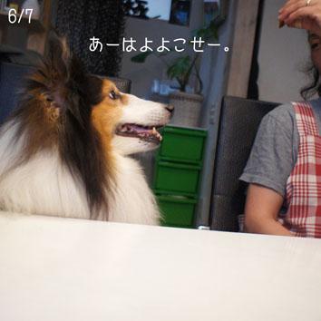 06070321.jpg